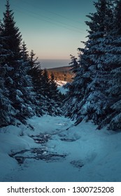 Mountain river with frozen water in the mountain in winter times after sunset. View down to the valley trough the framed pine trees. Harz Mountains National Park in Germany
