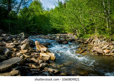 mountain river with green forest stones runnig water sunny day in spring