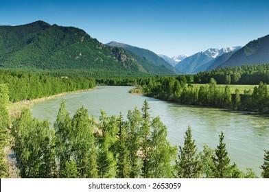 Mountain river Katun