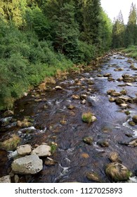Mountain  river named Vydra