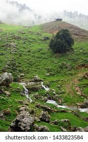 Mountain river in North Lebanon