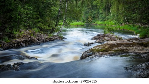 mountain river with rapids in the thick of the forest