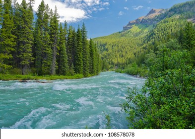 Mountain River at Rocky Mountains, Alberta, Canada.