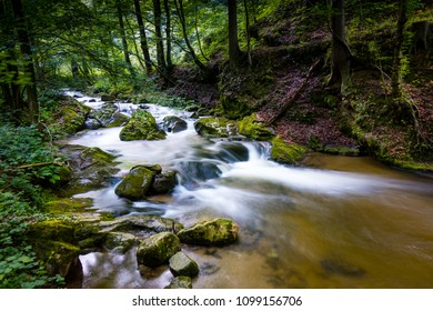 Mountain river - stream flowing through thick green forest. Stream in dense wood. Bistriski Vintgar, Slovenia
