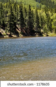 Mountain River in Summer