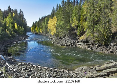 The mountain river with the transparent water, current among woods