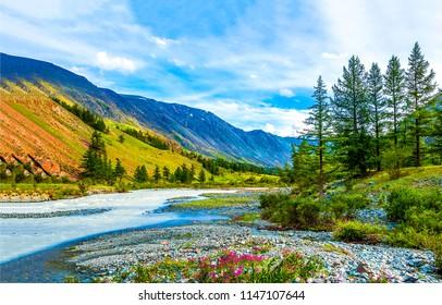 Mountain river valley landscape. Mountain valley river panorama. Mountain river valley view