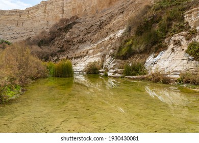 Mountain river view in Ein Avdat National Park, Negev Desert, Israel.