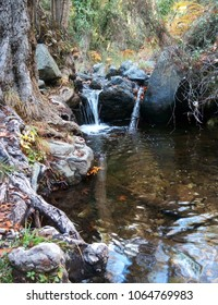 Mountain river with a waterfall, boulders and fallen leaves in autumn. Troodos Mountains, Cyprus.