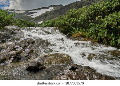 mountain river, a waterfall flowing down from a mountain peak between dwarf birch Betula nana bushes