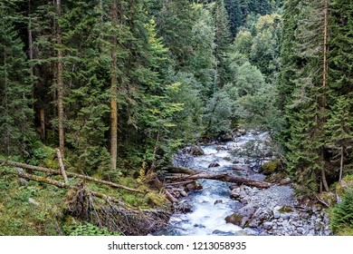 Mountain river. Wildlife. Mountain river. Wildlife. The Tumnin River is the largest river on the eastern slope of the Sikhote-Alin Range. Sikhote Alin, a mountainous country in the Far East