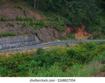 Mountain road at autumn in Dalat, Vietnam. Dalat is located 1,500 m above sea level in the Central Highlands region.