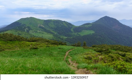The mountain road in cloudy day. The recent rain refreshed mountain vegetation which played all shades of green. Clouds in the sky part, opening the blue sky. Carpathians Mountains