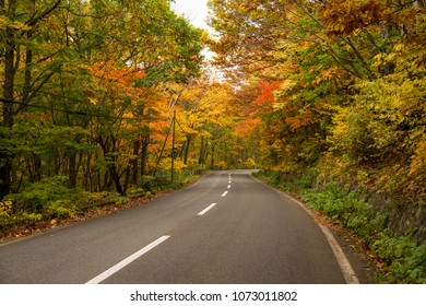 Mountain road at Hachimantai area in autumn season.