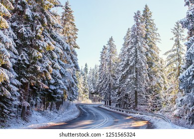 Mountain road on winter sunny day. Fir trees covered with snow on the roadsides. Travel or transportation background. Winter scenic background with road.