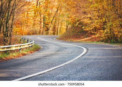 Mountain Road trough autumn forest