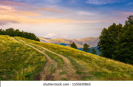 mountain road uphill in to the beech forest. Svydovets mountain ridge in the distance. beautiful clouds in reddish light on a blue evening sky. stunning landscape of Carpathian mountains, Ukraine