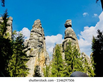 Mountain rocks with trees