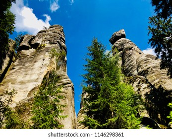 Mountain rocks and trees