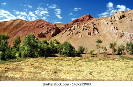 Mountain scenery of Afghanistan near Yakawlang in Bamyan (Bamiyan) Province. These colorful mountains are at the western end of the Hindu Kush mountain range in Central Afghanistan. Field and trees.