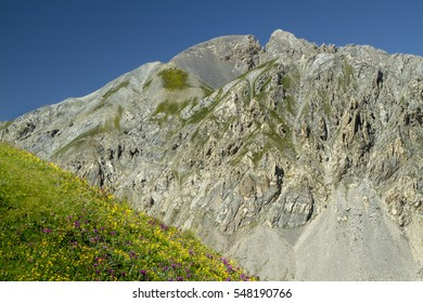 Mountain scenery in the alps