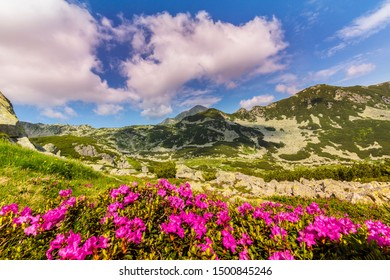 Mountain scenery in the Transylvanian Alps, in summer, with a beautiful glacier valley
