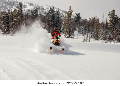 MOUNTAIN SHORIA, SHEREGESH -  April 10, 2018:Festival Dmitriy Belov, is flying and jumping on a snowmobile on a background of winter forest  leaving a trail of splashes of white snow. bright snowmobil