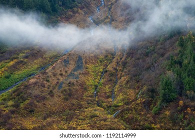 A mountain side covered in colorful autumn trees and shrubs, British Columbia, Canada