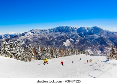 Mountain ski resort Shiga Kogen, Japan - nature and sport background, sunny day, snow pine trees