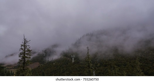 The mountain slope in lying cloud with the evergreen conifers shrouded in mist in a scenic landscape view