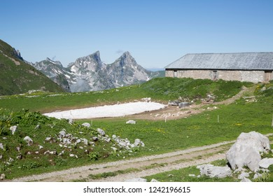 Mountain stable for animals with on the background les Jumelles mountain (Switzerland)