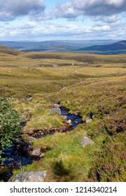 Mountain Stream - Allt Coire an t-Sneachda Cairngorm Mountains, Scotland