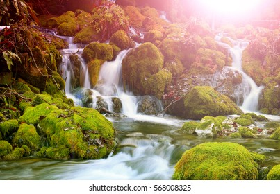 Mountain stream among the mossy stones