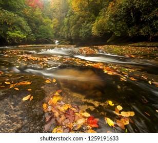Mountain Stream in Beautiful Fall Colors, North Carolina