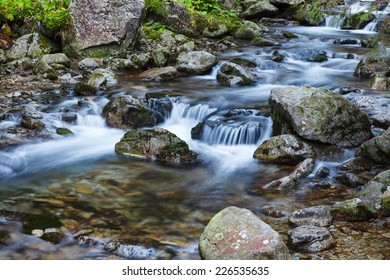 Mountain stream flowing around stones