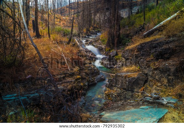 Mountain Stream Glacier National Park Long Stock Photo Edit
