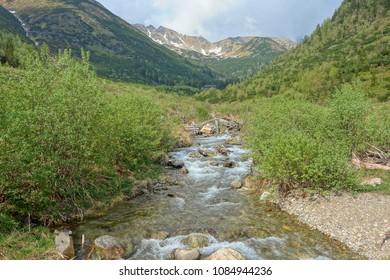 Mountain stream in Mountain landscape High Tatras National Park, Ziarska valley , Slovakia,Europe.