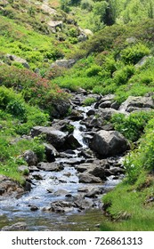 mountain stream in Pyrenees. Ariege in Occitanie. South of France