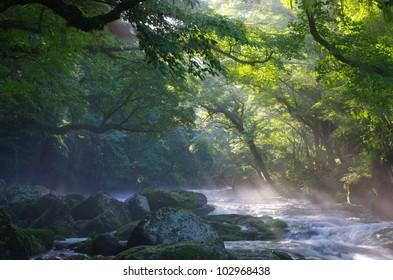 Mountain stream and shaft beam of light