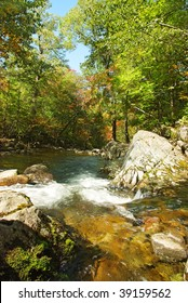 mountain stream Smolny in the fall forest of russian Primorye