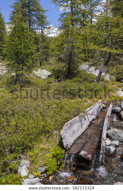 Mountain stream and a tank made with wooden planks to deliver water to livestock in the Monte Rosa Massif (Ayas Valley, Italy).