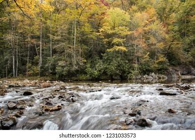 A mountain stream in western North Carolina.