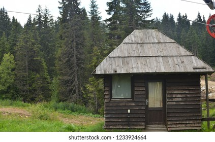Mountain style cottage against mountain forest