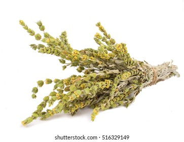 ?unch of mountain tea Malotira isolated on white. Greek traditional herbs