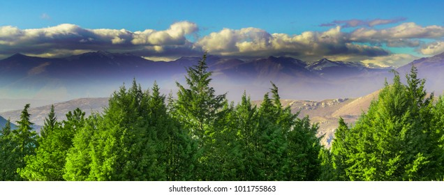 Mountain tops covered with snow and dark clouds, shot from behind a thick pine wood