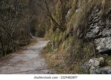 Mountain track with rocks and trees