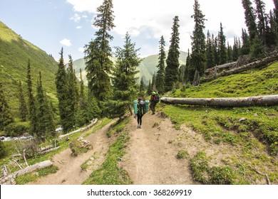 mountain trail  trekking