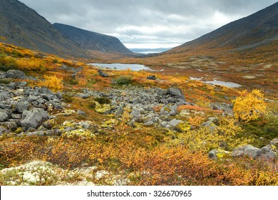 Mountain tundra with dwarf birch, mosses and rocks covered with lichens with a background of Tahtarjavr lake in Malaya Belaya river valley, Hibiny mountains above the Arctic circle, Russia