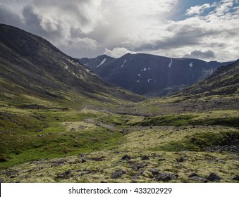 Mountain tundra with mosses and rocks covered with lichens, Hibiny mountains above the Arctic circle, Kola peninsula, Russia. HDR