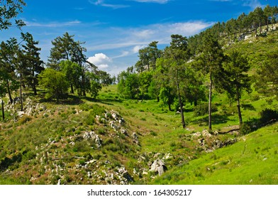 Mountain turkish summer landscape with rocks  and green hills